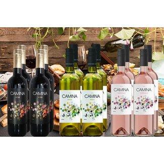 Zomer Wijnen Pakket bestaande uit 12 flessen wijn
