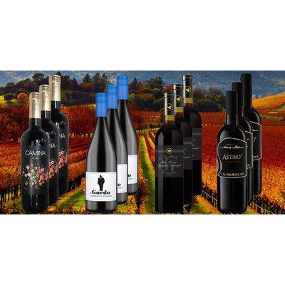 Herfst Wijnen Pakket bestaande uit 12 flessen wijn