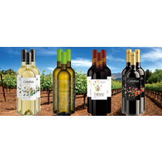 Voorjaarswijnen Pakket bestaande uit 12 flessen wijn