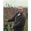 Salcuta Pinot Noir Winemaker's Way - Stefan Voda, Moldavië