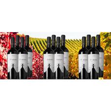 Herfstwijnen Pakket bestaande uit 12 flessen rode wijn