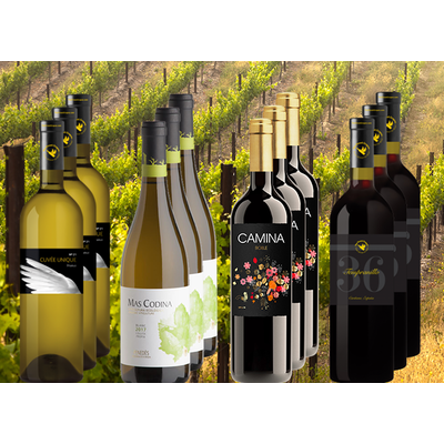 Quarantaine Pakket bestaande uit 12 flessen wijn