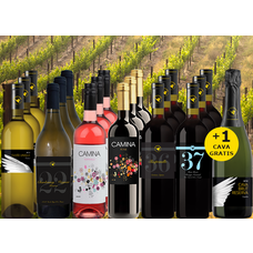 Lockdown Pakket bestaande uit 18+1 flessen wijn