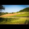 "Domaine Jean-Baptiste Ponsot Rully ""en Bas de Vauvry"" 2018 - Bourgogne, Frankrijk"