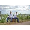 Weingut Georg Gustav Huff Niersteiner Chardonnay trocken - Nierstein, Duitsland