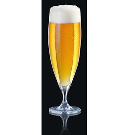 Bohemia Bierglazen Beercraft 380ml