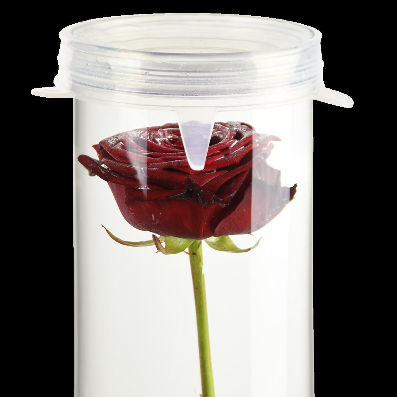 Esschert design Silicone afsluitdeksel voor  alle verzonken bloemen vazen