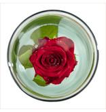 Esschert design Verzonken bloemen vaas  M 30cm hoog