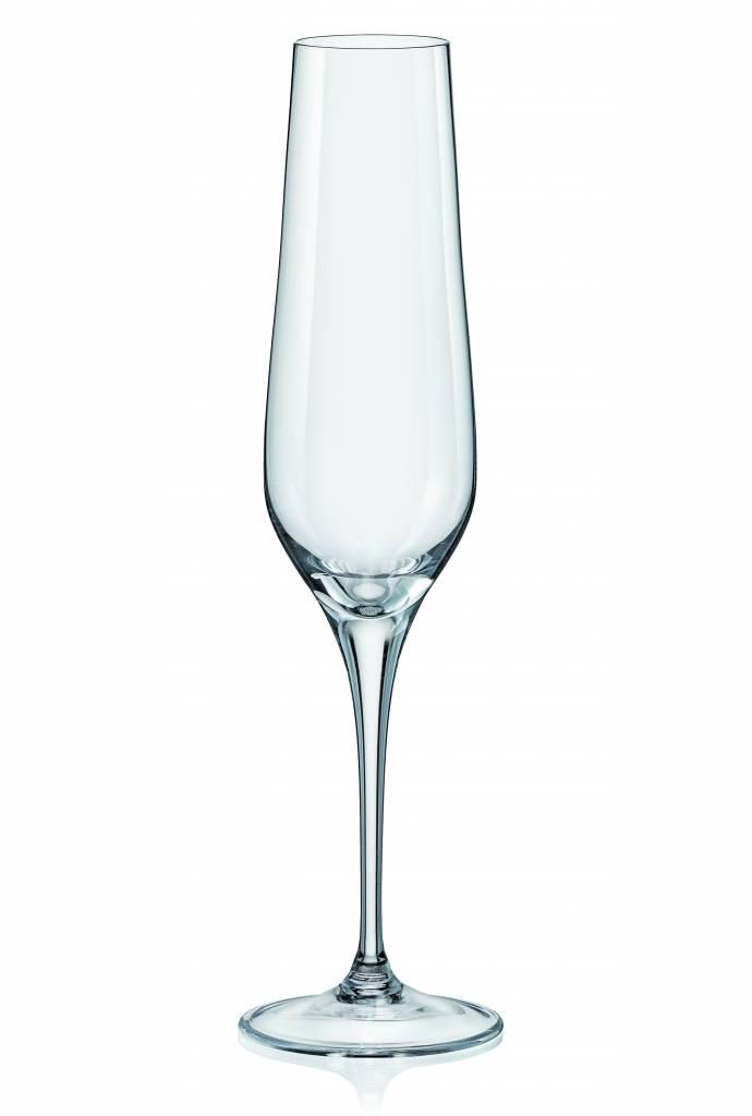 Crystalex Rebecca champagneglazen 195ml