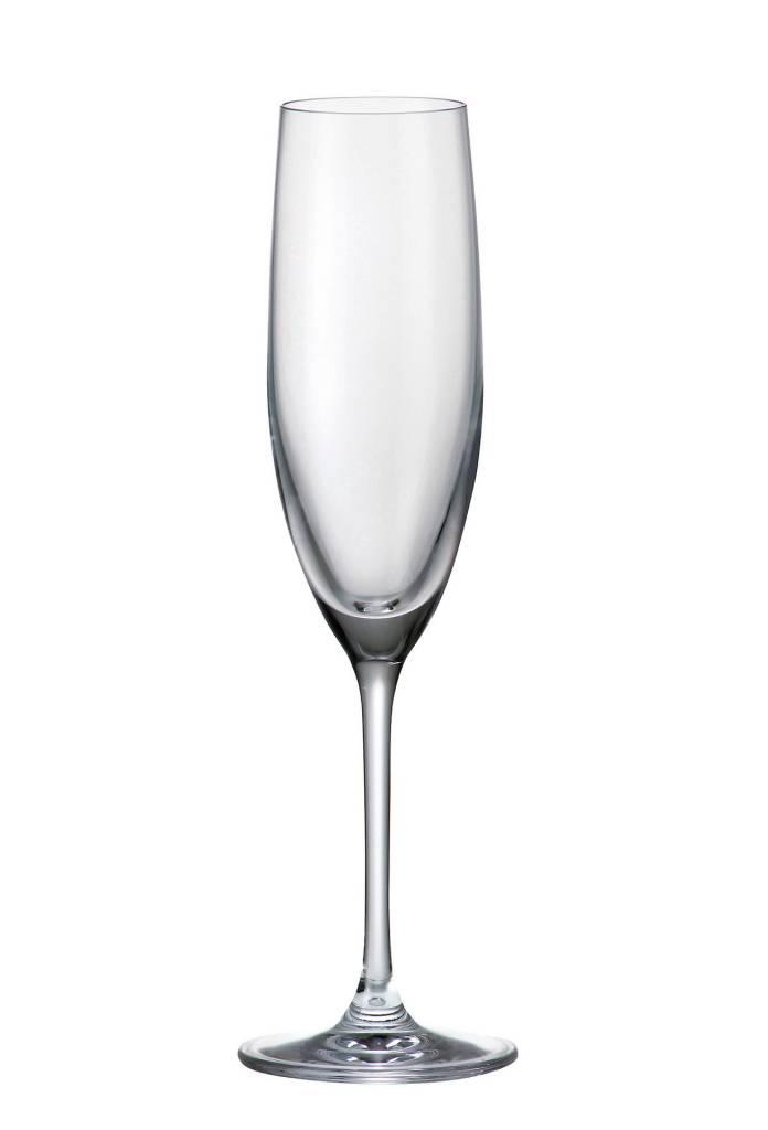 Crystalite Gourmet champagneglazen 180m