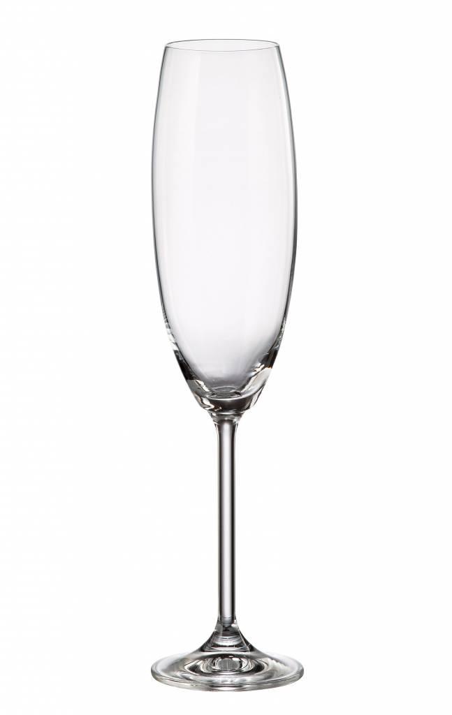 Bohemia Anne champagneglazen 230ml
