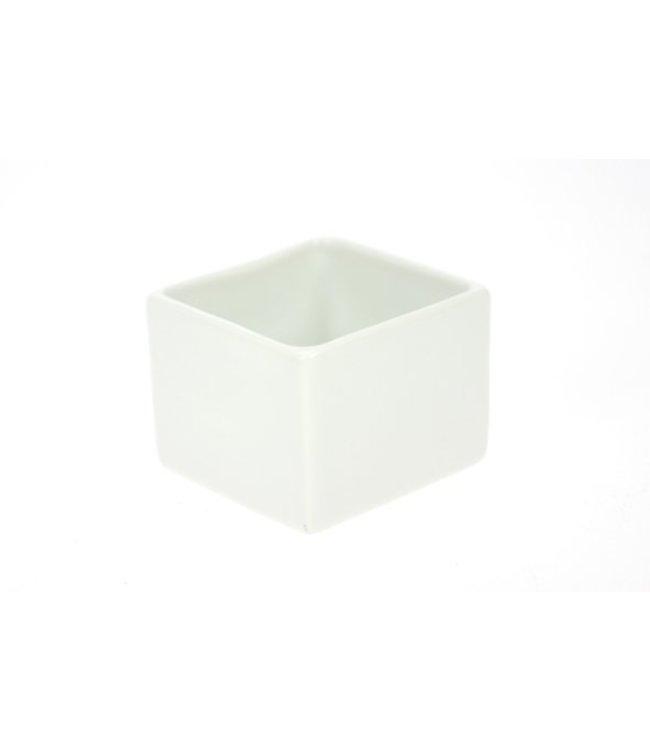 Cosy & Trendy Aperopotje Set6 4x4xh3cm Vierkantvormig