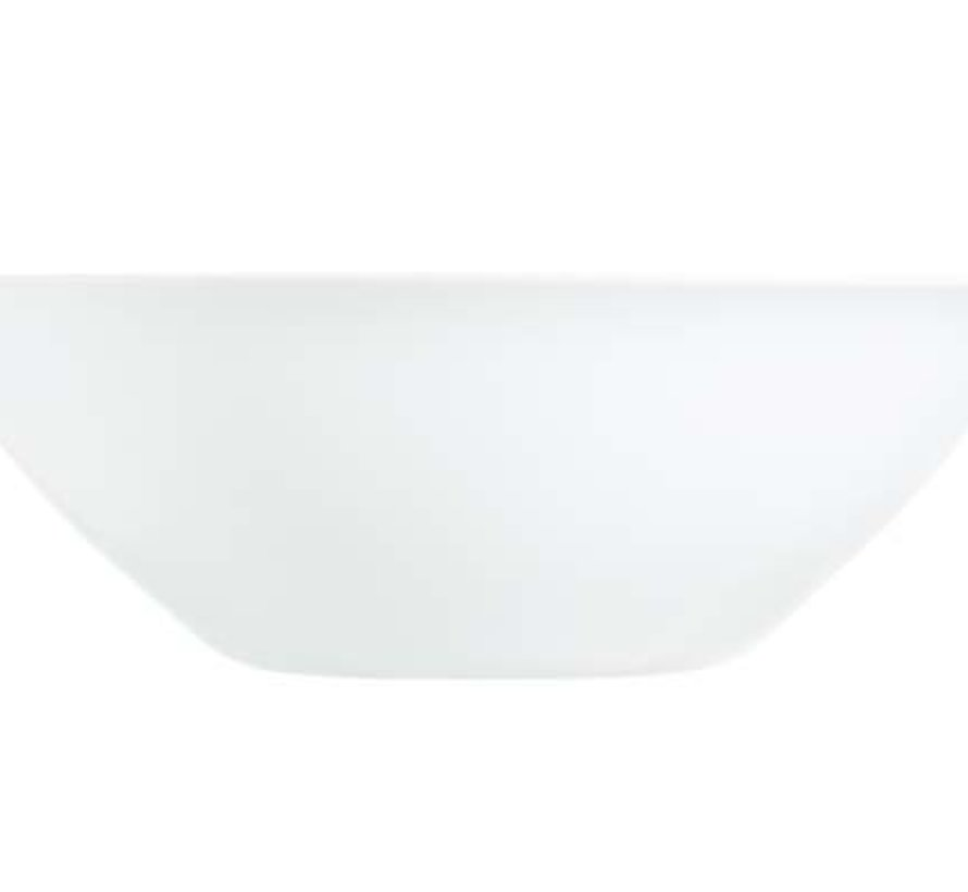 Carine Blanc Saladier