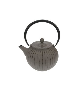 Cosy & Trendy Lantern Grey Teapot With Filter Tsp801,2l Cast Iron