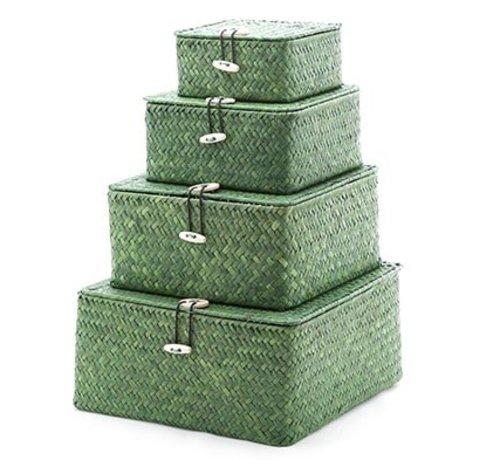 Cosy & Trendy Set4 Rieten Mandje Vierkant Groen 26x26x12.5cm 22x22x11cm 18x18x8.5cm 14x14x7cm