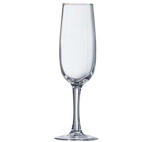 Arcoroc Elisa Champagneglas 17cl (set van 6)
