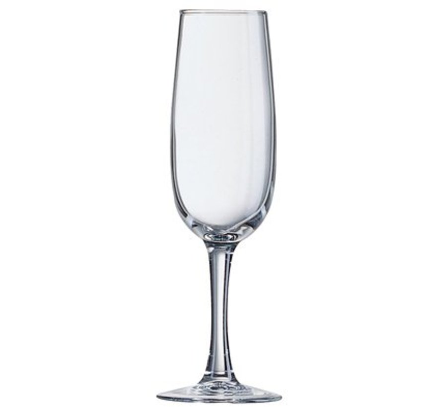 Elisa Champagneglas 17cl (set van 6)