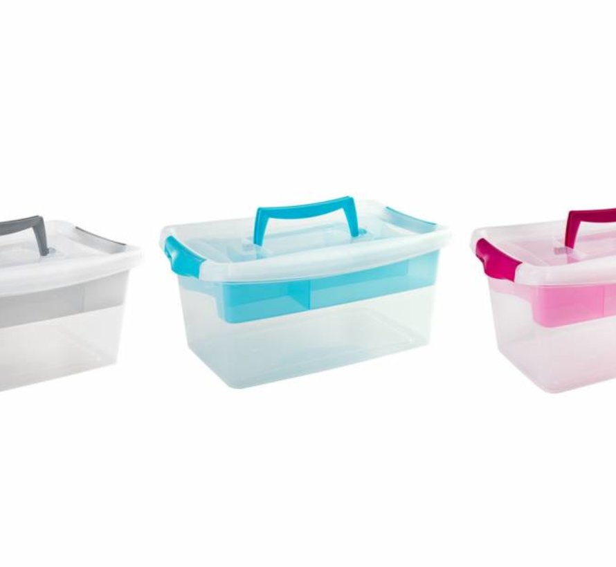 Coliseo Box With Tray 4l 29x19xh13cm Ass (set of 6)