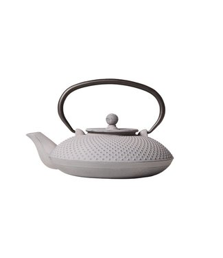 Cosy & Trendy Nara Teapot Gray Cast Iron 800ml With filter