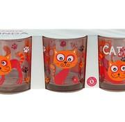 Cerve Linda Funny Cat Glass 22 Cl Set 3 (set of 12)