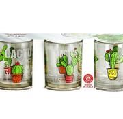 Cerve Glass Cactus Tumbler  25 Cl Set 3