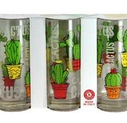 Cerve Cactus Longdrink Glas 36.5 Cl Set 3