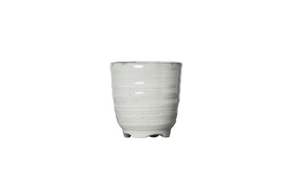 Cosy & Trendy Avalon Sake Cup D5xh5cm   50ml (set van 12)
