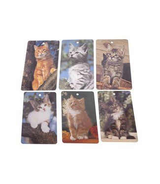 Ricolor Cutting Board Cats 6ass 23.5x14.5cmrectangular