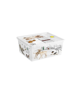 Kis Pets C-box Aufbewahrbox M 18l 40x34xh17cm