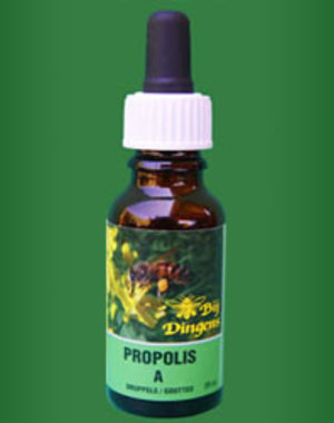 PROPOLIS Bij Dingens Propolis Drops A-strong 20ml