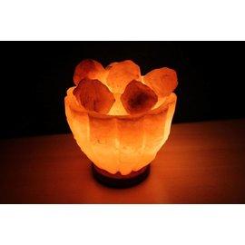 NATURAL BIO STORE Finest Selection Lampe à Sel de l'Himalaya