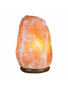 NATURAL BIO STORE Finest Selection Lampe à Sel de l'Himalaya Naturelle 2-3,5kg