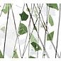 4117-000 green & white 3 mm