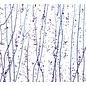 4242-000 neo-lavender & purple frit whit cobalt blue, purple streamers 3 mm
