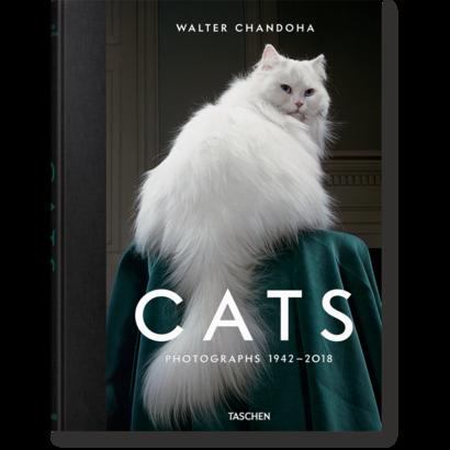 Walter Chandoha Cats  Photographs 1942–2018