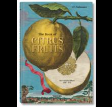 Citrus Fruits J. C. Volkamer Taschen