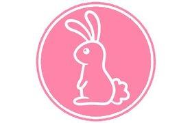 Sweet Bunny Hare