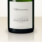 Marie Courtin Efflorescence 2013