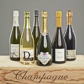 Probierpaket Blanc de Blancs Champagnes