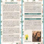 """Probierpaket """"Comparison vinification in oak vs. steel tank"""""""
