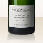 Pierre Paillard Les Parcelles MAGNUM