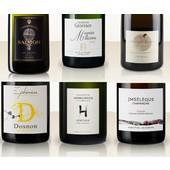 Probierpaket Pinot Meunier