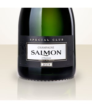 Alexandre Salmon Spécial Club 2012