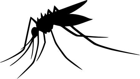 Pfiffige Hausmittel gegen Mückenstiche