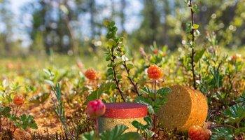 Nachhaltige Naturkosmetik - Ohne Mikroplastik