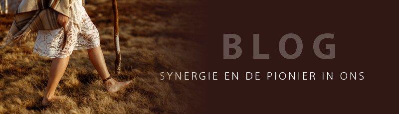 BLOG | SYNERGIE EN DE PIONIER IN ONS