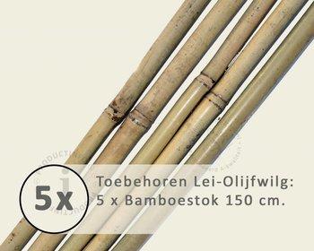 Toebehoren Lei-Olijfwilg los bestellen - Bamboestok