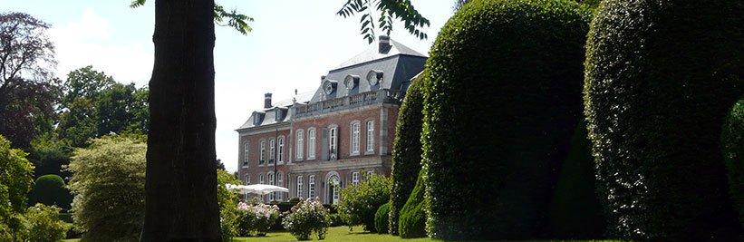 Haagplanten online kopen bij tuinplantenwinkel