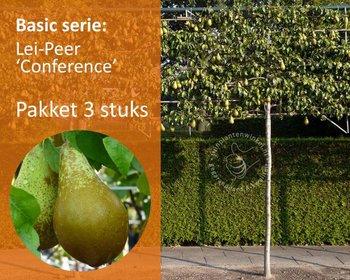 Lei-Peer 'Conference' - Basic - pakket 3 stuks + EXTRA'S!