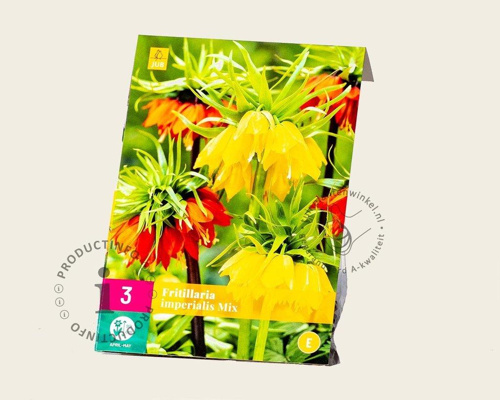 Fritillaria imperialis Mix